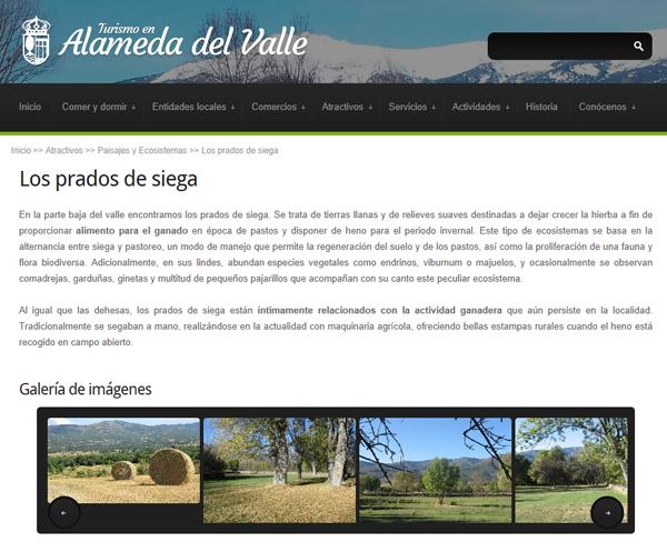 Web de Alameda del Valle